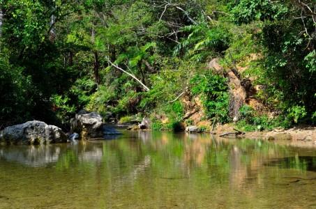 大宜味村の平南川上流 神秘的なター滝