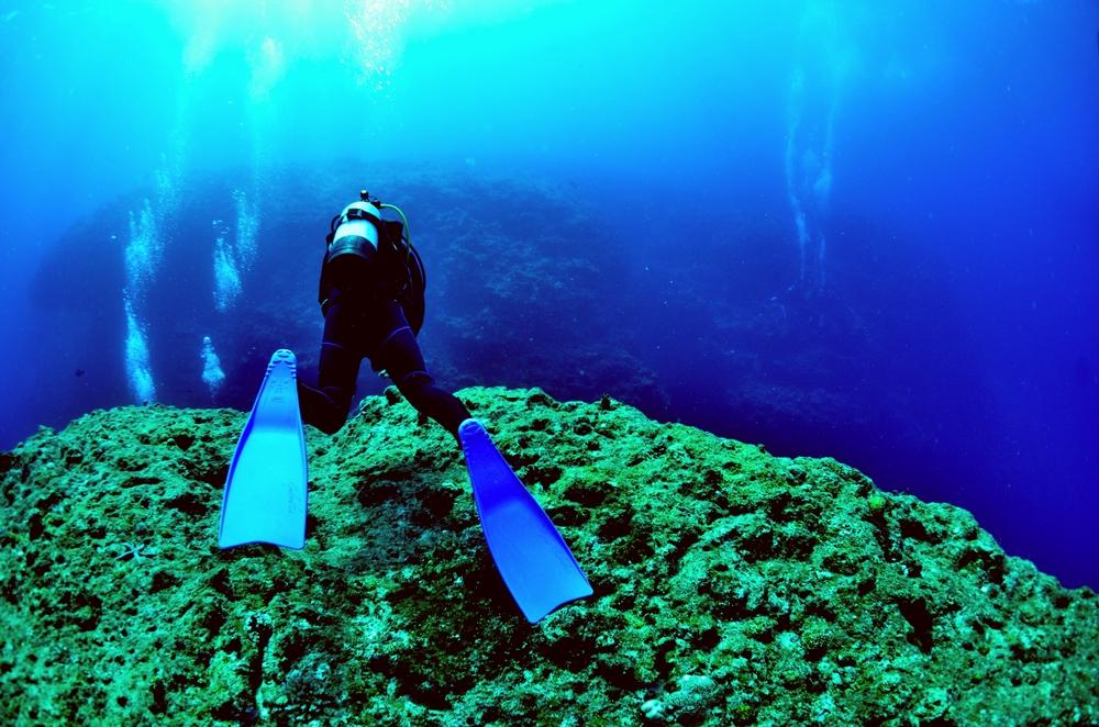 沖縄ダイビング求人情報 スタッフ・正社員募集