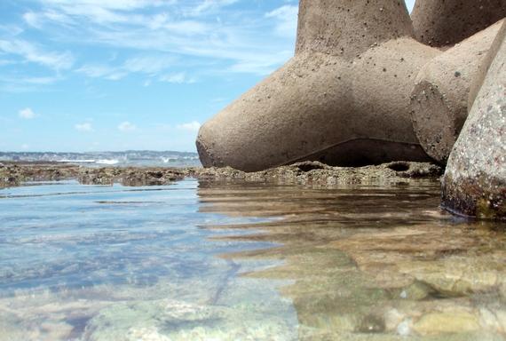 北谷町 ソフトコーラルの群生する砂辺海岸