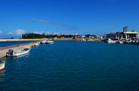 海ぶどうの直売店 恩納村の前兼久漁港